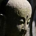 Photos: 鎌倉長谷寺06「安堵」