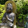 Photos: 鎌倉長谷寺04「仏像さん」