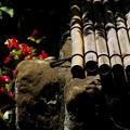 Photos: 鎌倉長谷寺12「古井戸」