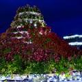 Photos: 2013河口湖ハーブフェスティバル18「富士山モニュメント」