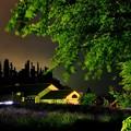 Photos: 2013河口湖ハーブフェスティバル17「美術館までライトアップ」