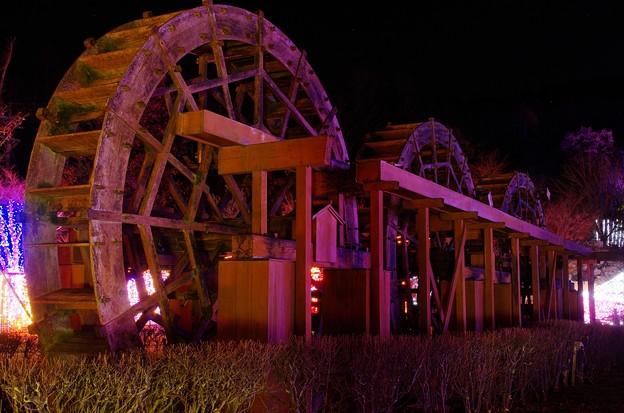 2013山中湖アートイルミネーション ファンタジウム番外08