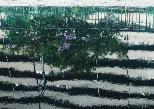 Photos: 東洋のベニス