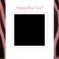 2014zebra1-pink