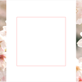Photos: spring-sakura3