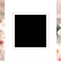 spring-sakura3