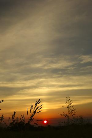河川敷からの夕焼け