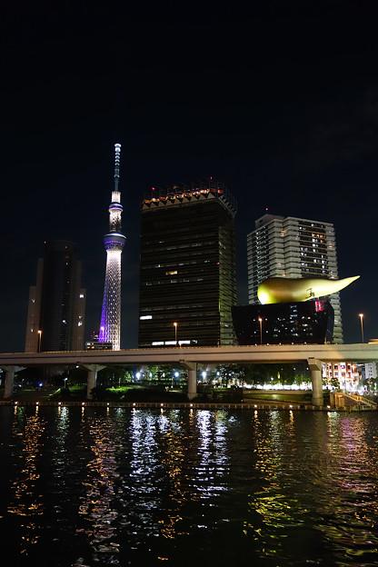 東京スカイツリー 雅