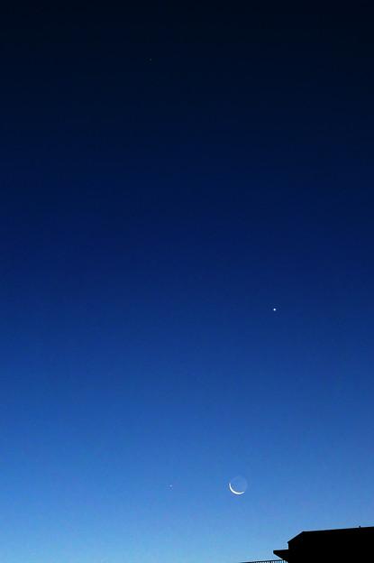 下弦の月に寄りそう金星と水星