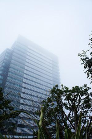 霧の向こうに見える青空