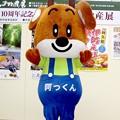 写真: 阿っくん in  北薩摩観光物産展(1)
