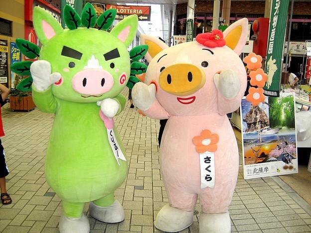 写真: ぐりぶー&さくら in  北薩摩観光物産展(1)
