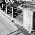 写真: 1978年 神芝橋