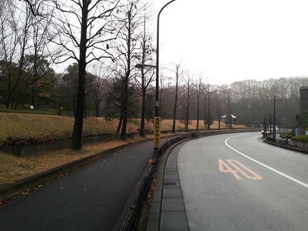 121218 真光寺公園