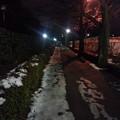 写真: 130117 皇居ラン(夜)