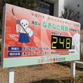 写真: 130124 港区スポーツセンター