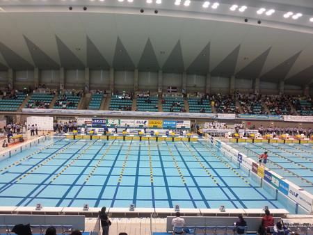 130224 日本選手権(短水路)