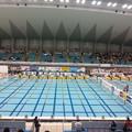 写真: 130224 日本選手権(短水路)