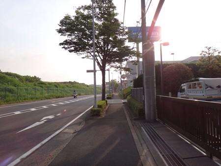 130516 朝ラン@尾根幹線