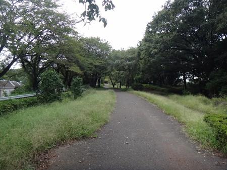 130926 尾根緑道