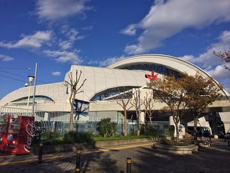 131113 東京辰巳国際水泳場