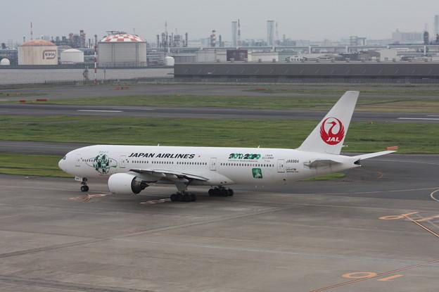 JALエコジェット 鶴丸 JA8984