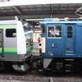 Photos: E233系6000番台とEF64の連結部