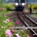 Photos: 関東鉄道・三妻駅