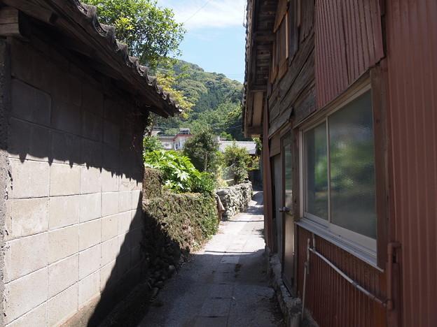 写真: 西野浦