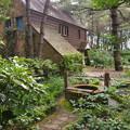 写真: 英国庭園