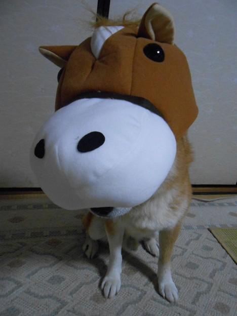 アッコしゃんって誰(?_?)