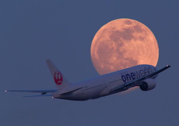 2013-05-24 JAL527便と月齢14.4の月