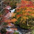 写真: 写真00202 阿寒の滝口で
