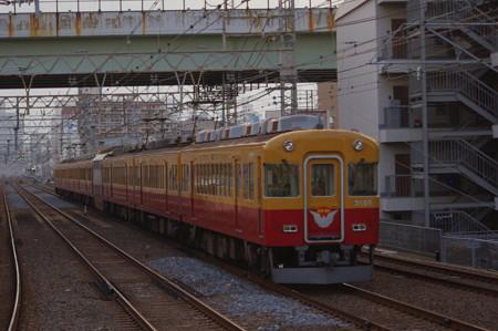 IMGP3325