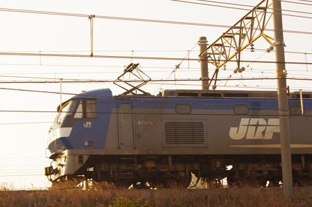 IMGP5976