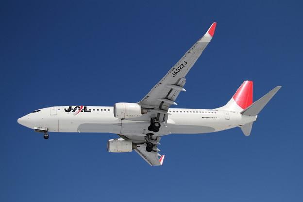 雪レフばっちり JAL B737-800