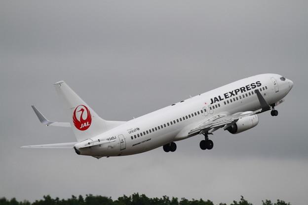 JAL B737-800 JA345J