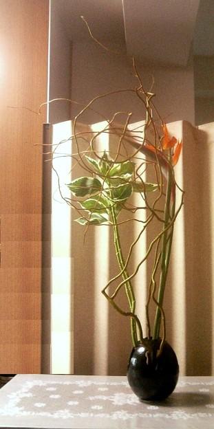 好きな花材、苦手な花材