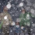 写真: 雪・雪