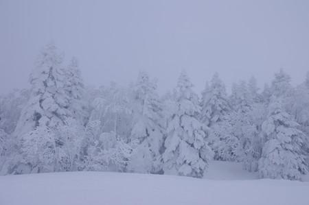 樹氷高原駅付近