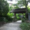 Photos: 久しぶりに有休をとって温泉に来ました。箱根は東京よりだいぶ涼しい...
