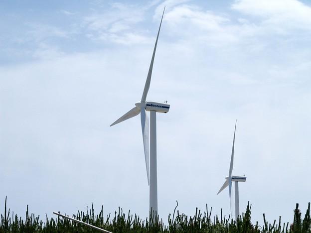 神栖市の風力発電