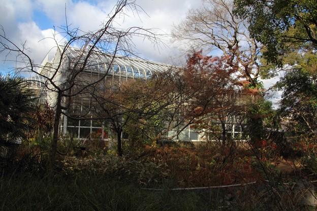 宝塚ガーデンフィールズ13122427