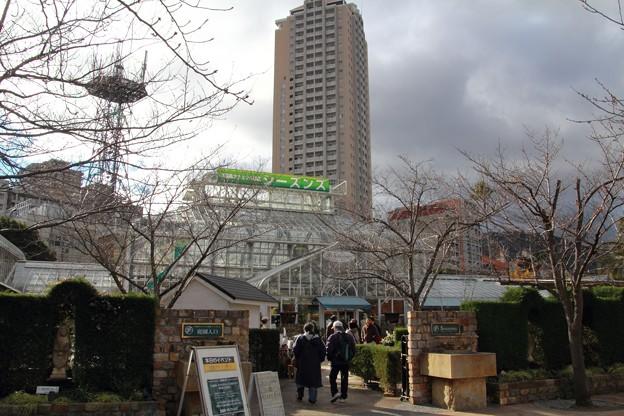 宝塚ガーデンフィールズ13122468