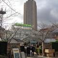 写真: 宝塚ガーデンフィールズ13122468