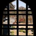 松本城から外を見ると