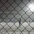写真: 吹雪の夜のグラウンド