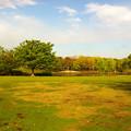 写真: 朝の公園