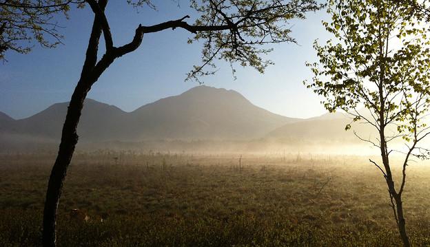 Photos: 霧の戦場