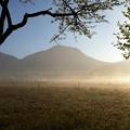 写真: 霧の戦場
